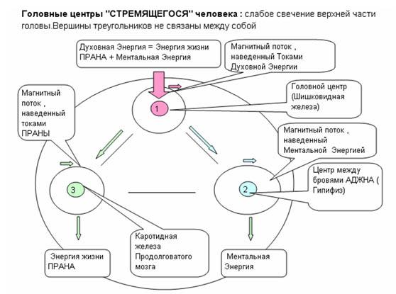 Торсионные_поля12