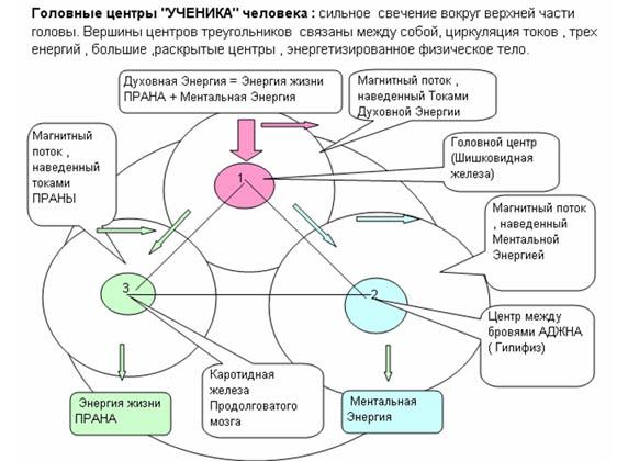 Торсионные_поля14
