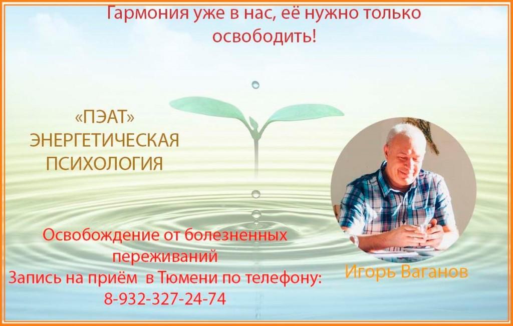Игорь Ваганов (2)