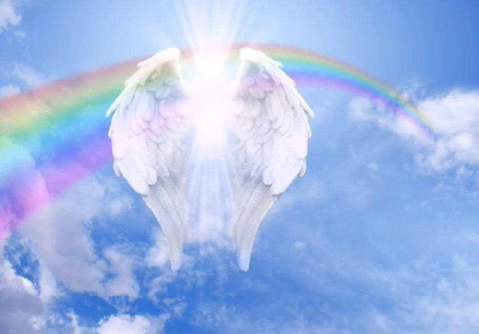 крылья ангела2